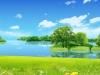 O lume frumoasă