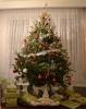 Pomul de Crăciun