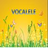 Vocalele - Poezie